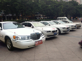 白色加长林肯9.8米车队(4台车)